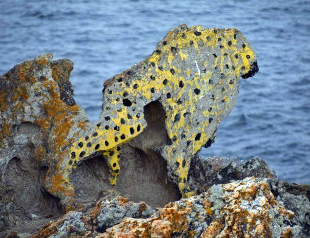 cabo-home-costa-da-vela-(5)